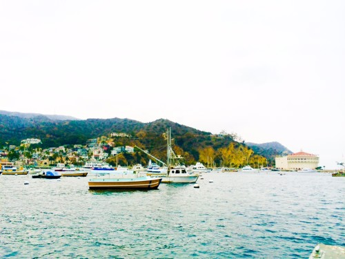 Catalina - Avalon Harbor